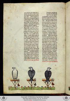 """""""Über die Kunst mit Vögeln zu jagen"""", Kaiser Friedrich II, Römisch-Deutsches Reich (1194-1250), Süditalien, 1258-1266"""