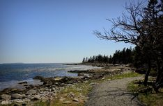 Pubnico Point Trail — Scenic trail in Pubnico Point, Nova Scotia Tourist Information, Nova Scotia, Travel Guide, Things To Do, Trail, Walking, Beach, Water, Outdoor