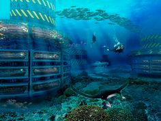 Grand Cancun Underwater City