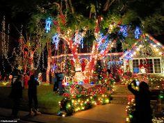 IMG_4550-christmas-lights.jpg (1000×750)