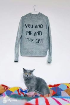 I want the sweater AND the cat... ~p.M