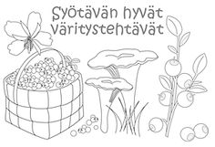 Paljon hyvää tietoa: Arktiset aromit Teaching Aids, Teaching Kindergarten, Fall Crafts, Crafts For Kids, Arts And Crafts, Environmental Studies, Bible Pictures, Colouring Pics, Early Education