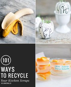 101 ingenious ways to recycle your kitchen scraps - AOL.com