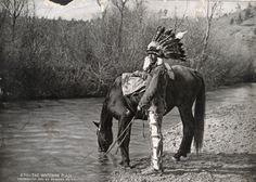 Chief Cornstalk: Shawnee Lineage   Metcalf Family Mews