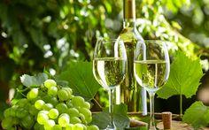 Lataa kuva Valkoviini, viinirypäleet, lasit viiniä, kesällä, kylä viini tynnyri, viini