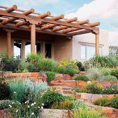 Santa Fe Landscaping.  Who said xeriscape is all rock...psssh
