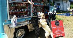 A Seattle (Etats-Unis), un couple a choisi de pousser encore plus loin le concept de restauration de rue. Ce dernier a en effet décidé de vendre – dans son camion – uniquement des recettes élaborées pour les chiens.