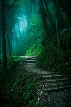 I would love to go walking here!