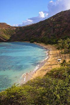 Snorkeling with sea turtles at Hanauma Bay - Oahu, Hawaii Blue Hawaii, Hawaii Life, Honolulu Hawaii, Kauai, Vacation Destinations, Dream Vacations, Vacation Spots, Holiday Destinations, The Places Youll Go