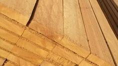 La Dabema, una especie muy parecida al Iroko | Green Resources