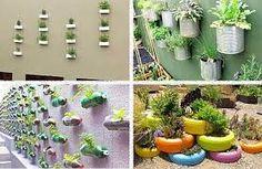 Resultado de imagem para horta organica em apartamento