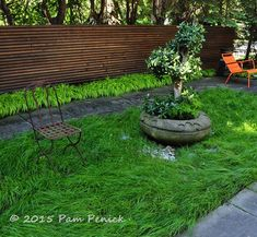 Simple lines, big impact in Forest Hills contemporary garden: Toronto Garden Bloggers Fling | Digging