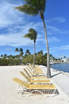 Complete Photo Gallery of Our Florida Keys Road Trip – Monika Boch Travel Key Photo, Florida Keys, Key West, Photo Galleries, Road Trip, Gallery, Beach, Travel, Key Largo