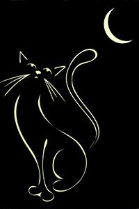 Аватар вконтакте Тонкий месяц и силуэт кошки на черном фоне (© царица Томара), добавлено: 30.06.2015 16:17
