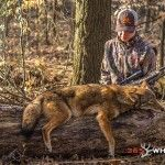 Coyote Hunting Tips Big Game Hunting, Hog Hunting, Coyote Hunting, Hunting Tips, Hunting Rifles, Turkey Hunting, Hunting Stuff, Coyote Trapping, Fishing 101