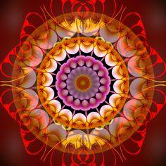 richesse de la réalité ! richness of reality ! riqueza da realidade ! Mandala de Pierre Vermersch Digital Drawings