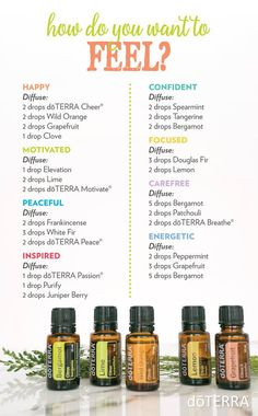 "We all have days when it's a little hard to get going. Luckily, there's an oil for that. Choose your preferred mood below, drop the oils in your diffuser, inhale, and wait for your ""new"" mood to set in!"