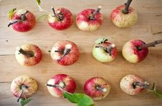 Ukusna krema i puter od jabuka brzo i jednostavno - LifePress magazin