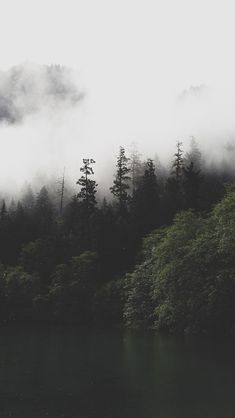 Mountain Forest Lake Mist iPhone 5 Wallpaper