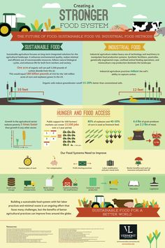 The Future Of Food: Susteinable vs Industrial, a graphic.