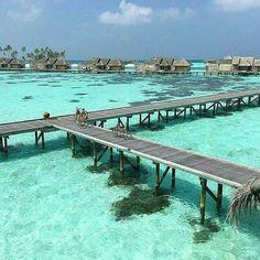 Regrann from - Gili Lankanfushi - Maldives : . Maldives Beach, Visit Maldives, Maldives Islands, Maldives Travel, Gili Lankanfushi, Maldives Destinations, Maldives Holidays, Ultimate Travel, Travel Goals