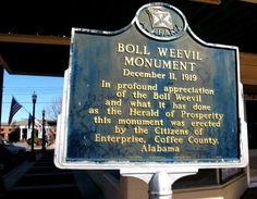 My turn off on the way home....  Boll Weevil Sign in Enterprise, Alabama...  Because the boll weevil destroyed the cotton crops, farmers planted peanuts, which became their new cash crop.