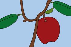 Hunter is always planting apple seeds, maybe this way will work for him.  How to Grow Apple Seeds thumbnail