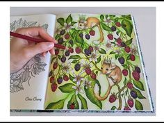 getlinkyoutube.com-Mouse Wonderland   Daydreams Coloring Book   Coloring With Colored Pencils