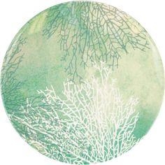 Michael Aram Ocean Melamine Coral Dinner Plates 6 ct - Napkins.com
