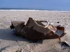 In 2017, they picked up nearly 374,000 pieces of trash, 84 percent of which was plastic or plastic foam; 66 percent of the trash collected was discarded single-use items.  The trash is either left behind by beachgoers or washed ashore from sewage systems that overflow during heavy rainstorms.  Some of the more unusual items included enough to stock a small medical clinic: blood vials, dentures, a knee brace, pill bottles, a surgical mask, and a bottle of eye drops.