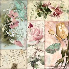 Belles Fleurs II Print by Mindy Sommers