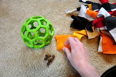 "Does your dog like to do this:     Leopold  has always liked to ""disembowel"" his stuffed toys.  I used to stop him  before he could comple..."