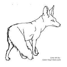 bat eared fox coloring page | ... tweet coloring pages blog newest additions main coloring page index