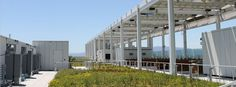 Levi Stadium's roof garden. At 49ers' New Sustainable Stadium Fans, players, and staff are all benefitting from sustainability upgrades. Get #smart about #sports and #stadium #construction. #Audio at Yale Climate Connections