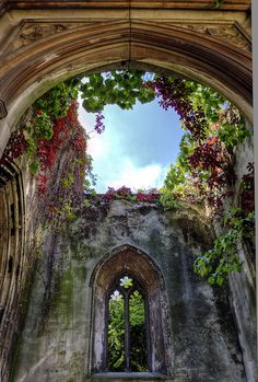 St. Dunstan-in-the-East was a Church of England parish church  halfway between London Bridge and the Tower of London. There has been a church on this site since approximately 1100.  The church was destroyed in 1941 during the London Blitz of WW2. The scarred and blackened walls of the old church remain and now surround a tranquil area designated as a peace garden.  Very cool!