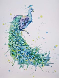 Peacock painting in watercolour splash style. Peacock Sketch, Watercolor Peacock, Peacock Painting, Watercolor Animals, Watercolor Paintings, Original Paintings, Watercolours, Portrait Acrylic, Watercolor Portraits