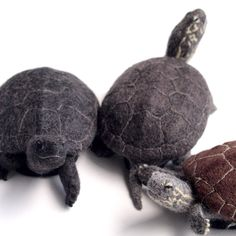 Needle felted turtles, Wow!
