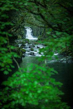Hidden falls by Masato Mukoyama