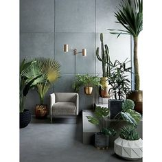 Best Indoor Plant Decoration To Copy Right Now 26