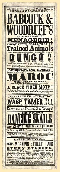 "Babcock and Woodruff's Menagerie playbill. c.1840. In 1839, Margaret ""Peggy"" Babcock joined with James Woodruff's Menagerie to create Victorian Britain's largest travelling menagerie. The illustrious Dungo and his many descendants were prominently featured throughout the menagerie's history."