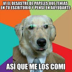 El perro de negocios tambien sabe ayudar a un colega        Gracias a http://www.cuantocabron.com/   Si quieres leer la noticia completa visita: http://www.estoy-aburrido.com/el-perro-de-negocios-tambien-sabe-ayudar-a-un-colega/
