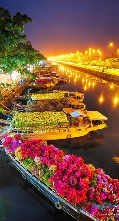 Saigon Flower Market - Vietnam ❤ Travel equipment with character is available on vam . - Saigon Flower Market – Vietnam ❤ There& travel gear with character vamadu. Places Around The World, Oh The Places You'll Go, Places To Travel, Travel Destinations, Places To Visit, Around The Worlds, Vacation Travel, Travel Plan, Vietnam Voyage