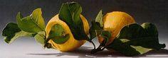 Gioacchino Passini - New Site Realistic Paintings, Recipe Images, Still Life, Plant Leaves, Art Gallery, Fruit, Plants, Lemon, Breathe