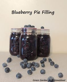 This blueberry pie filling is easy and a much welcomed treat come the cold winter months. Uses a water bath method and includes chart for altitude adjustment.