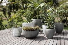 Our Pots & Planters are crafted from high quality materials and will freshen up your space instantly. Artificial plants make beautiful interior decor all year long without the hassle that live plants require. Balcony Design, Pottery Planters, House Plants, Freshen Up, Live Plants, Home Decor, Beautiful Interiors Decor