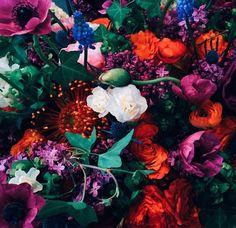 Jewel toned florals ❤️