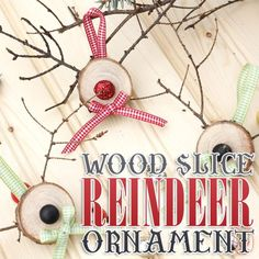 Wood Slice Reindeer Ornament and some Fun News
