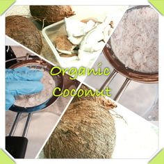 Pressing fresh organic coconut milk for Naturallei Naked Shampoo with Argan Oil and Honey!