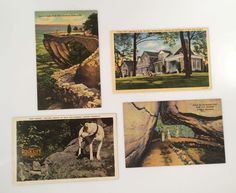 Vintage Post Cards Lot of 4 Rock City Gardens Lookout Mountain TN Landmarks #Vintage #Postcards #RockCityGardens #LookoutMountain #Tennessee #LoversLeap #EnchantedTrail #CarterCliff #Travel
