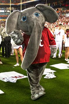 Big Al - elephant mascot of the Alabama Crimson Tide. He made his first official appearance for Bama in Alabama Crimson Tide, Crimson Tide Football, Alabama Football, Alabama Athletics, Alabama Baby, Football Decor, American Football, Paul Bear Bryant, Bama Fever